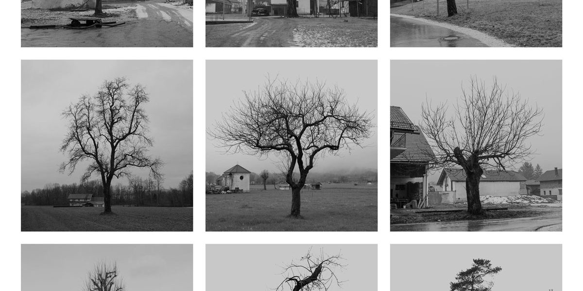 Collective project of Photo club Kamnik Photography Club