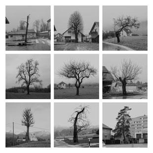 kolektivni projekt Foto kluba Kamnik