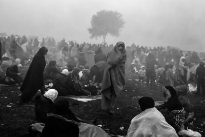 Jaka Gasar, Refugees, 2015